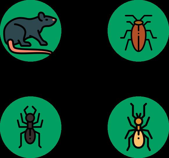 Ilustração de um rato, aranha, formiga e cupim
